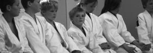 Aikido voor de jeugd