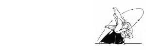 Aikido-Bedrijfstraining